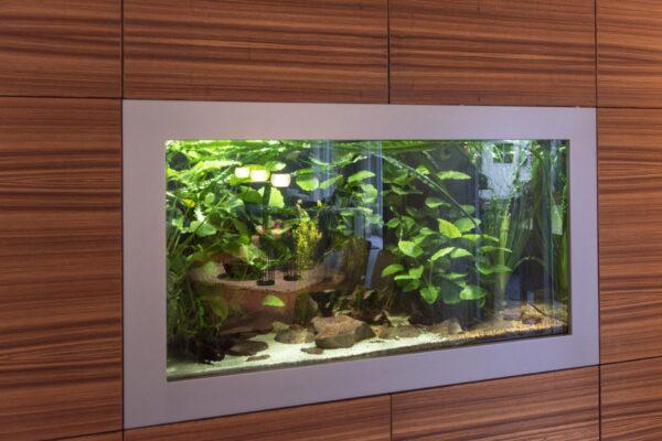 Aquarium in Schrank integriert